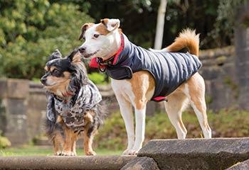 Hundkläder och Hundtäcken | Arrak Outdoor